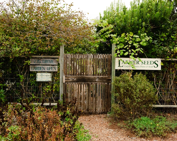 Larner Seeds Demonstration Garden