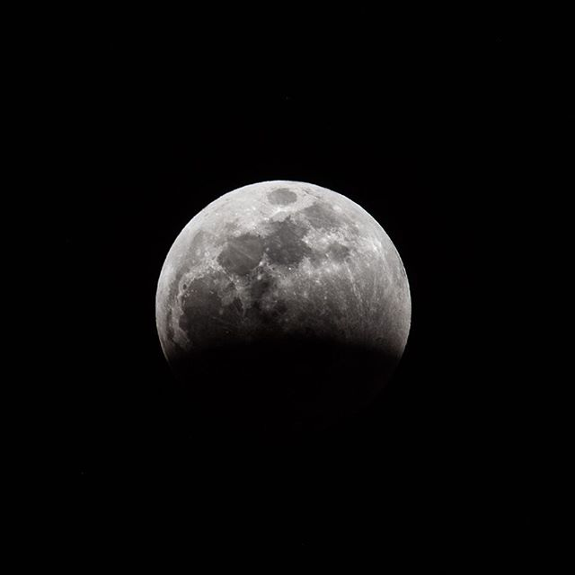 Super Blood Wolf Moon . . . #superbloodwolfmoon #lunareclipse #moon #nightsky #baynature