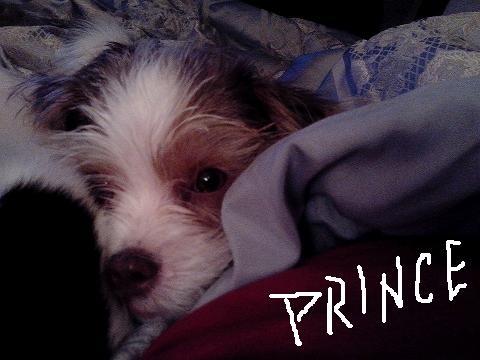 Osburn, Prince pic1