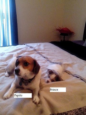 Osburn, Prince pic2