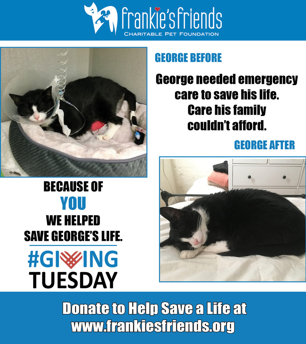 GIving Tuesday George_2a.jpg