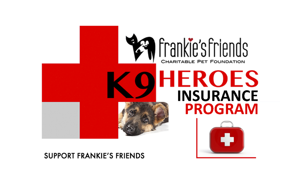 K9 Heroes Insurance Banner_Kindness.png
