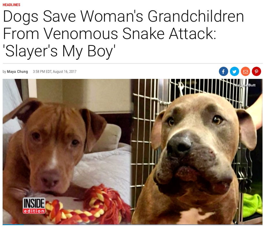 INSIDE edition, Slayer Saves Woman's Grandchidren