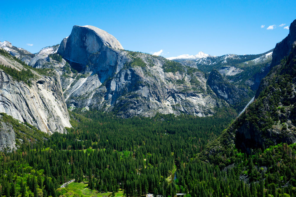 Half Dome in all its wonder