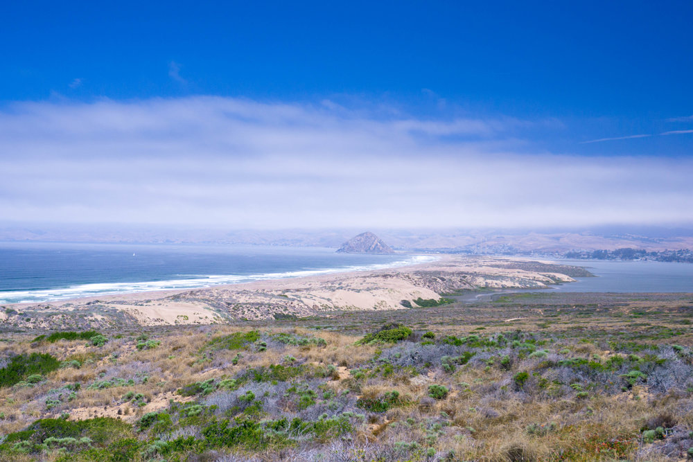 Enchanted by the coastal volcanic plug, we brought the misadventure to Morro Bay.