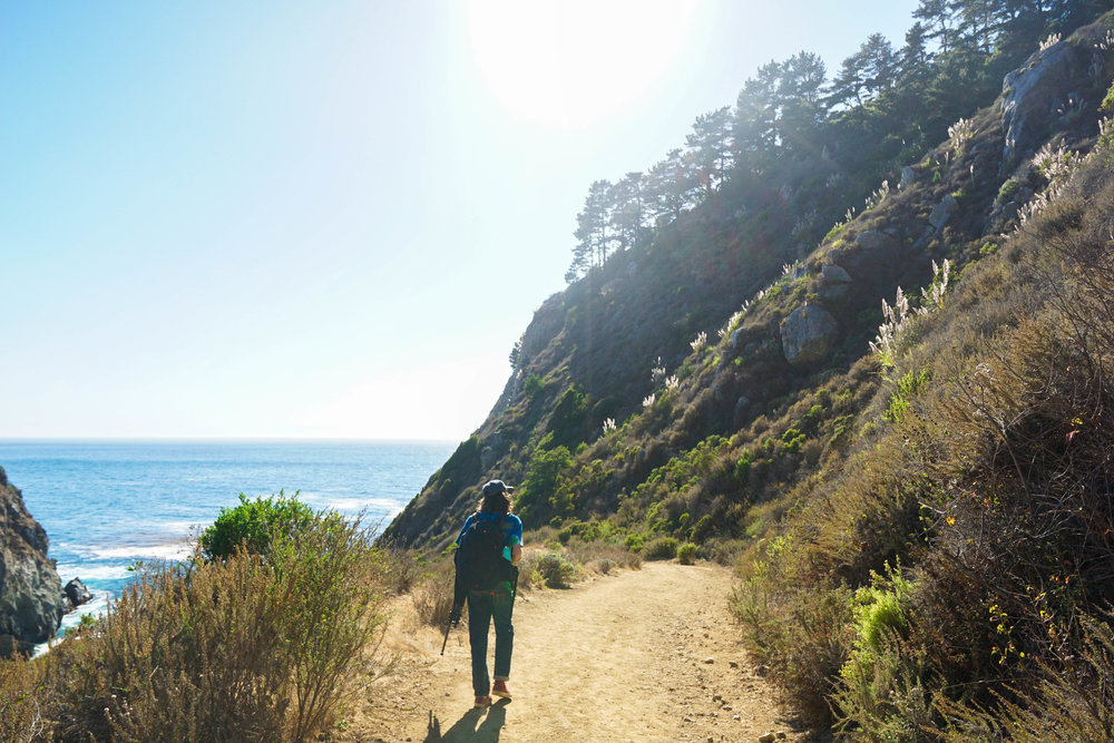 After leaving the forest, we find a new trail & head to a new segment of coastline.