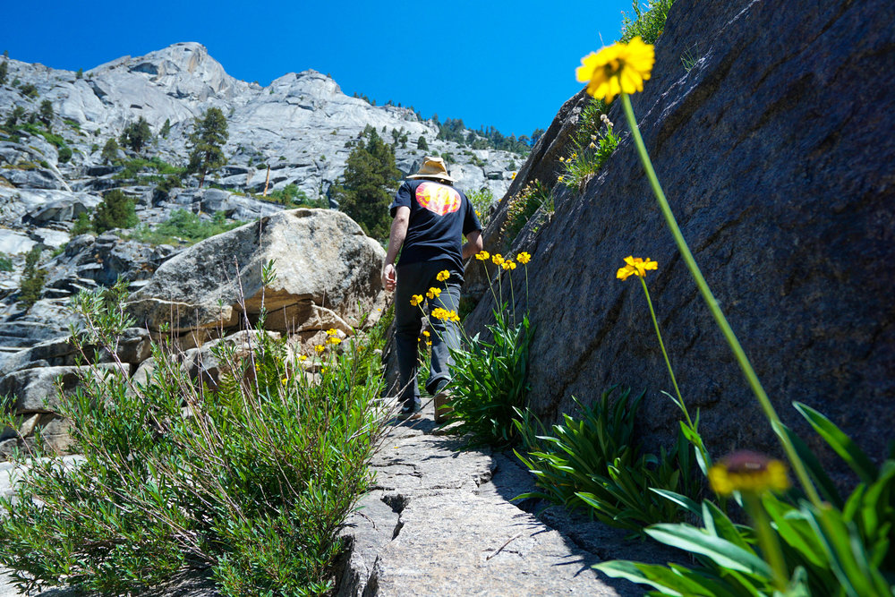 One of the awesome things about the Sierra is that some of its best wildflower blooms take place even in late Summer.