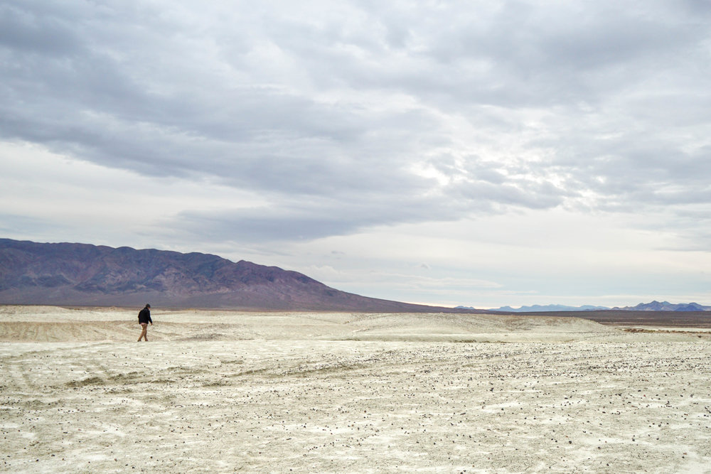 This dry lake bed is rich in minerals including Borax, Pink Halite, Hanksite & Trona. The most well known borax company got its name from the 20-mule teams hauling minerals to the San Pedro Harbor.