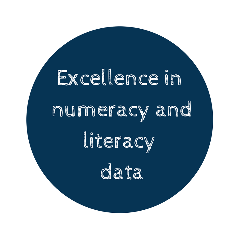Excellence in numeracy and literacy data.png