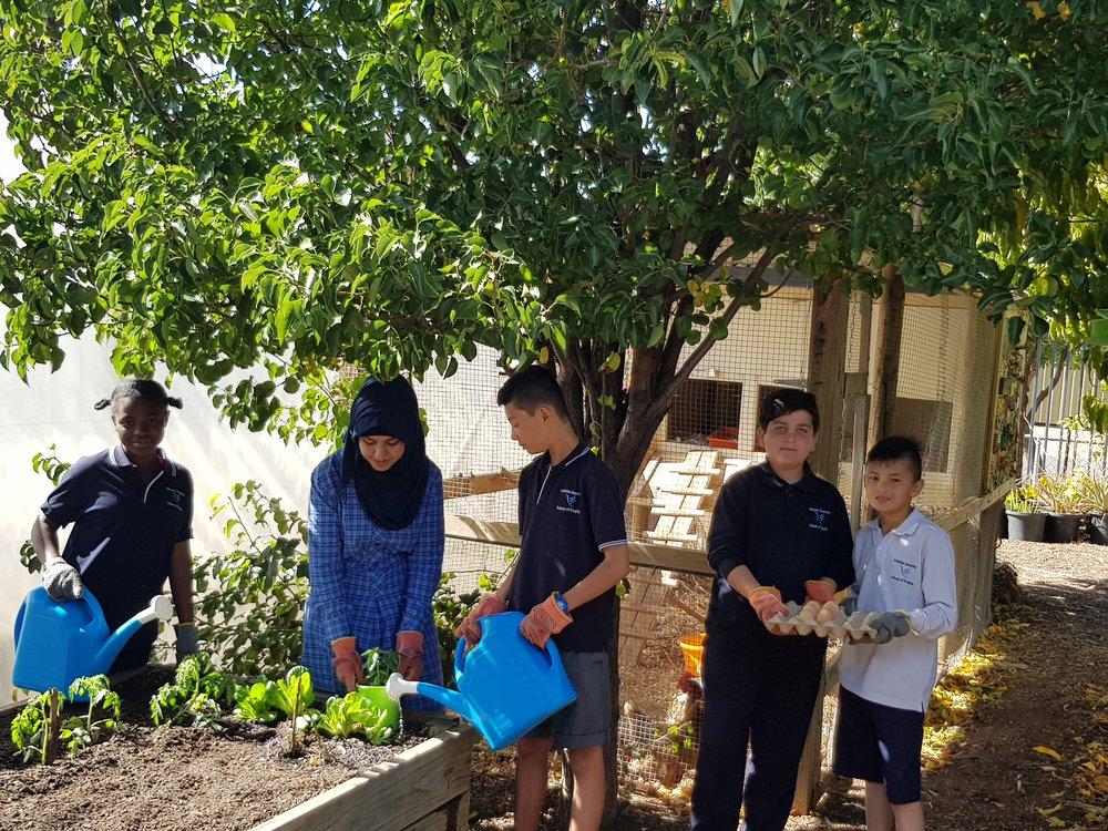 students working in the school garden