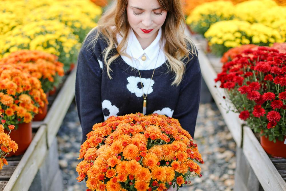 Fall Photo Shoot at Greenstreet Gardens