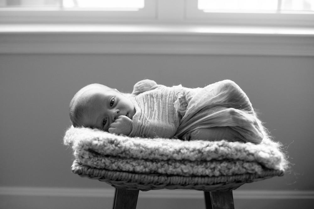 Baby Hudson [2014]