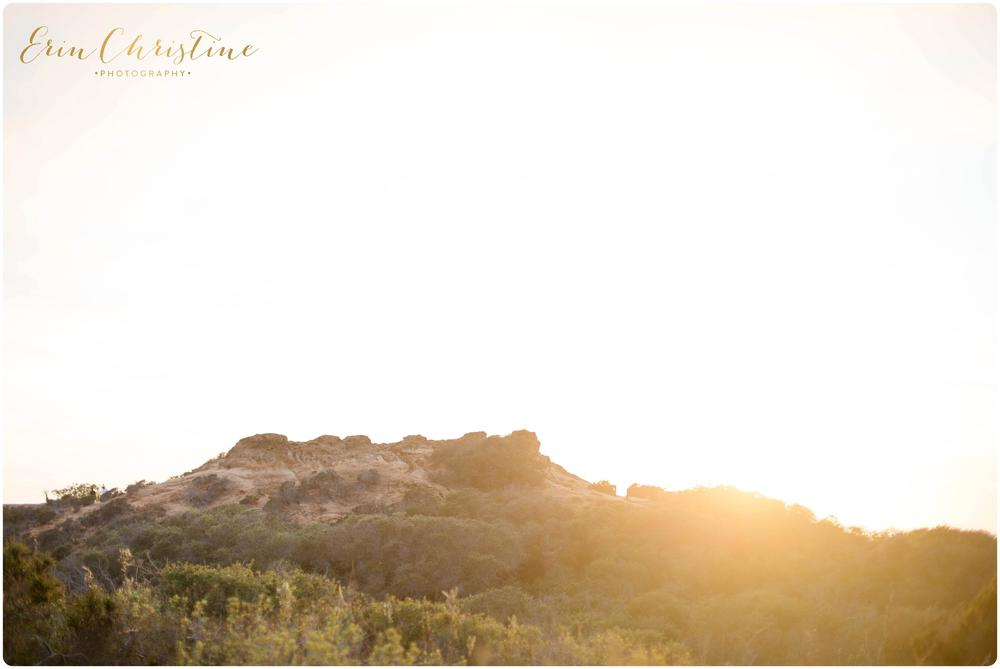 Torrey Pines Bridal Session15.jpg