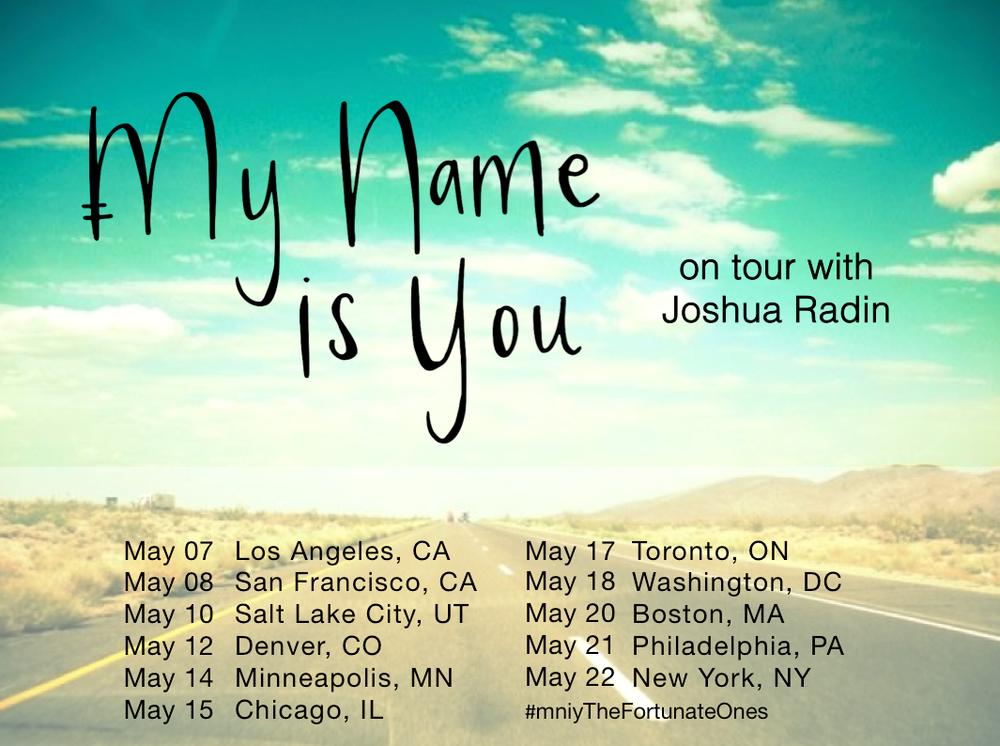 us tour poster 2