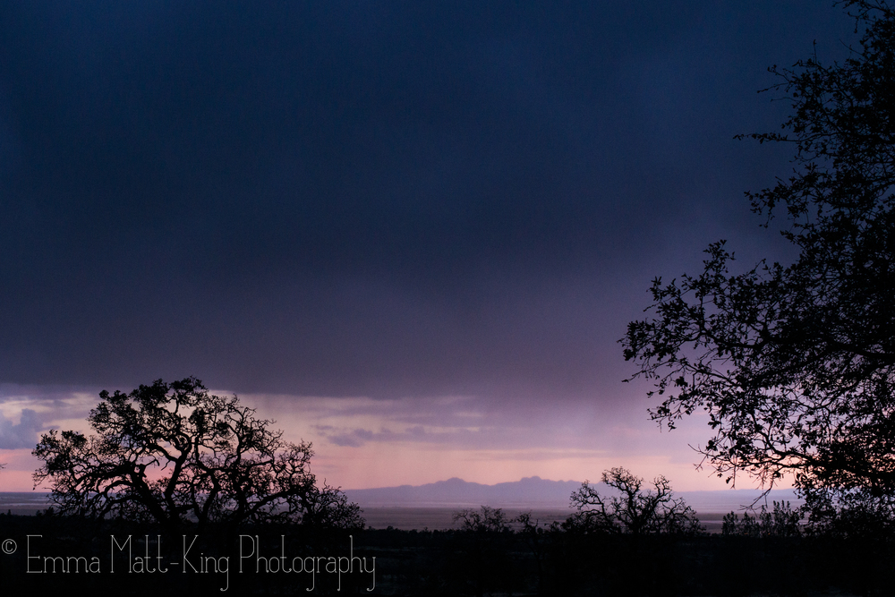 Emma Matt-King Photography-13.jpg