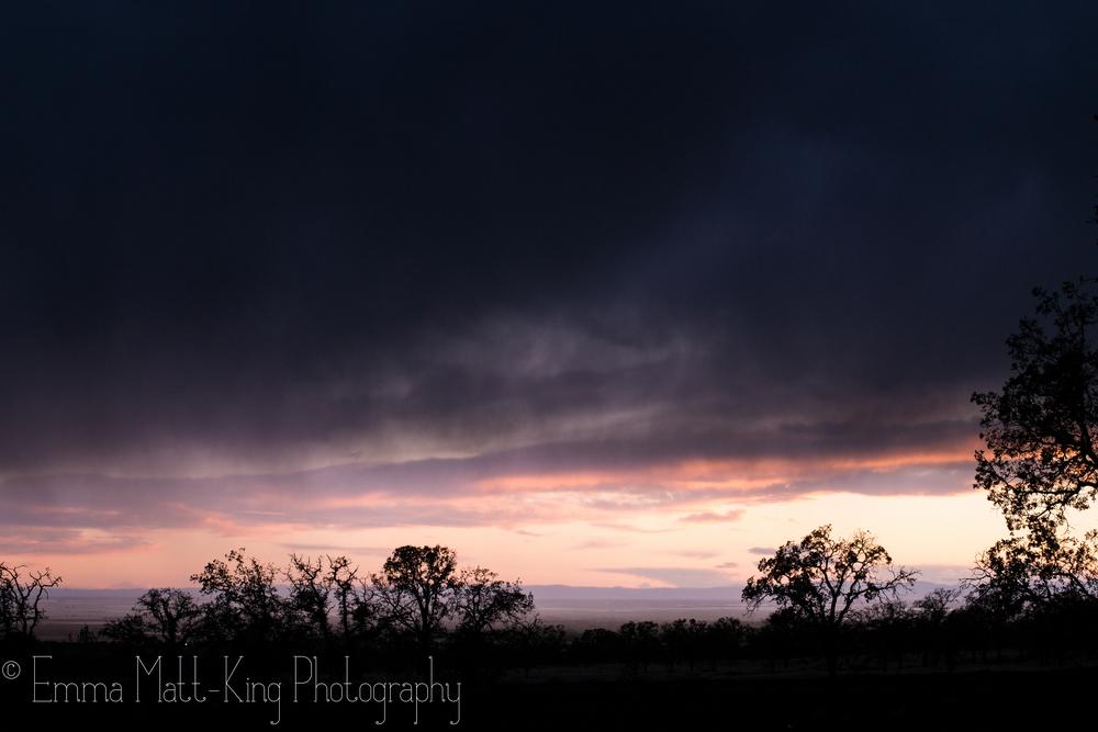Emma Matt-King Photography-15.jpg