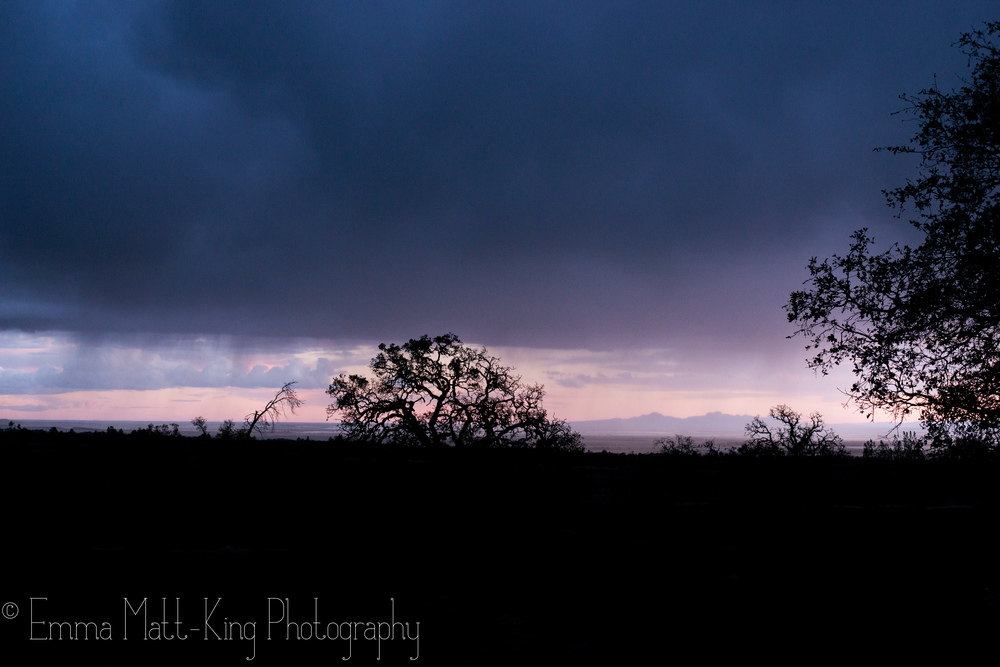 Emma Matt-King Photography-14.jpg