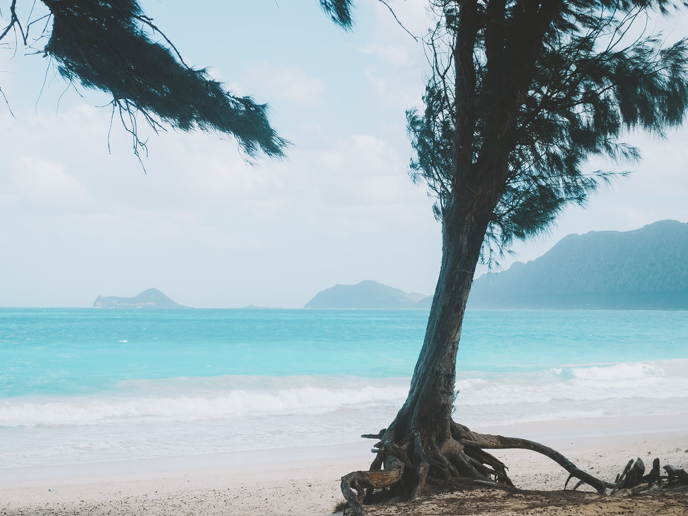 Bellows Beach, Oahu, Hawaii