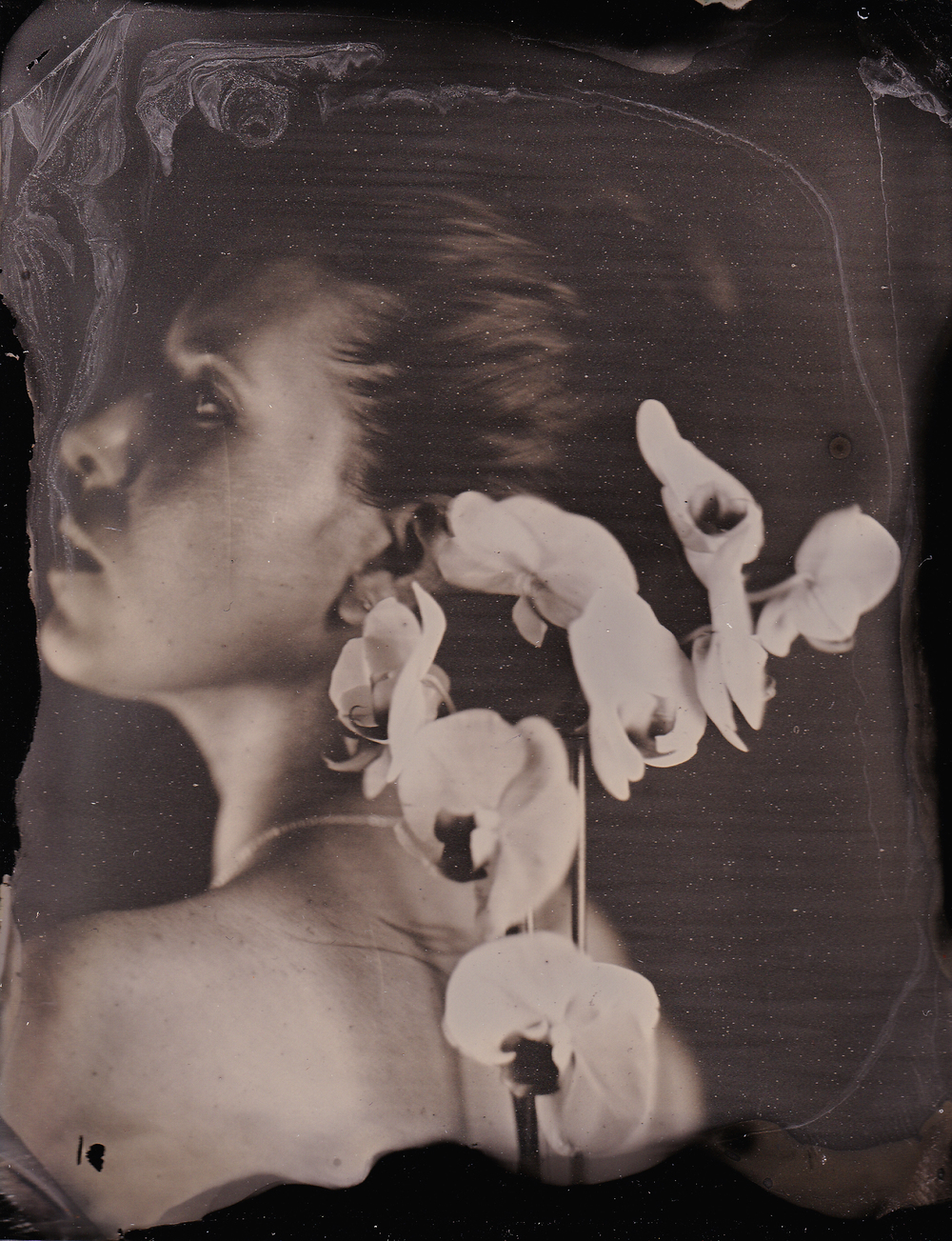 Lady of the Orchids I