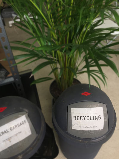 In line with  Byron Councils Recycle & Waste  guidelines, we recycle all waste in the Coworking Hub.
