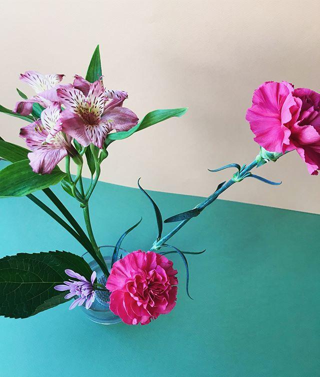 Supernova 🌸💫 #blooms #florals #ikebana