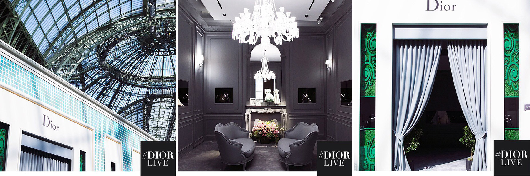 Dior by Carin Olsson (Paris in Four Months)