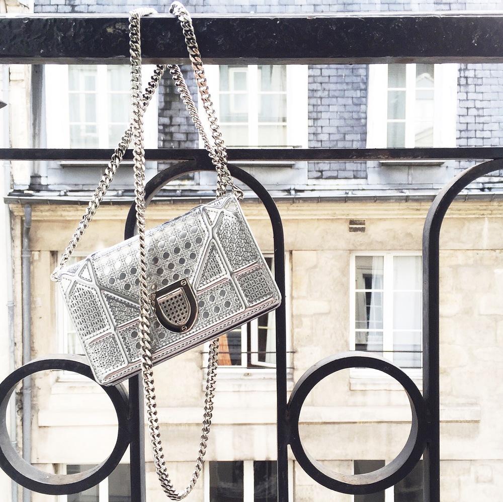 Bag: Dior