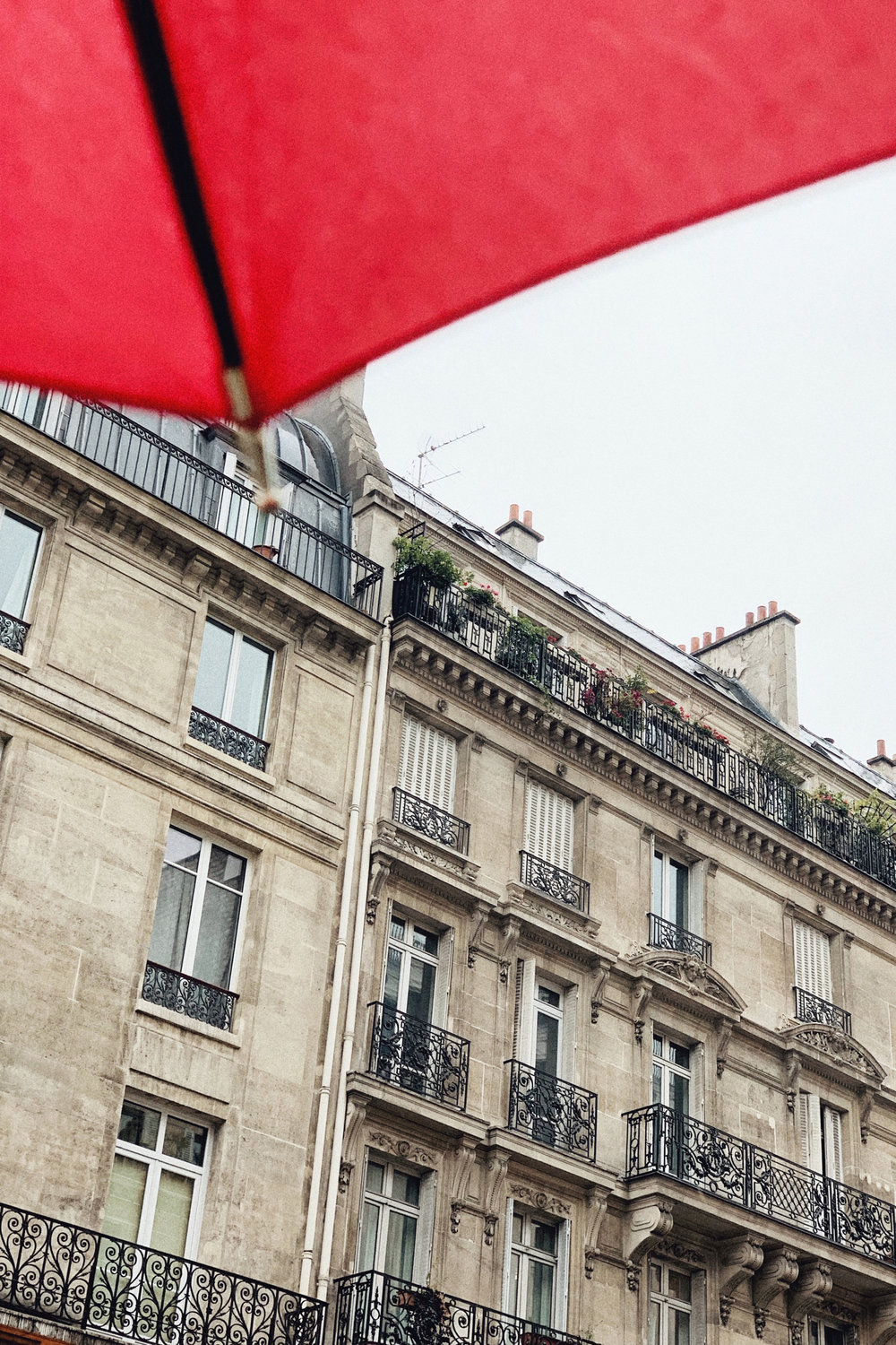 Paris in the rain by Carin Olsson