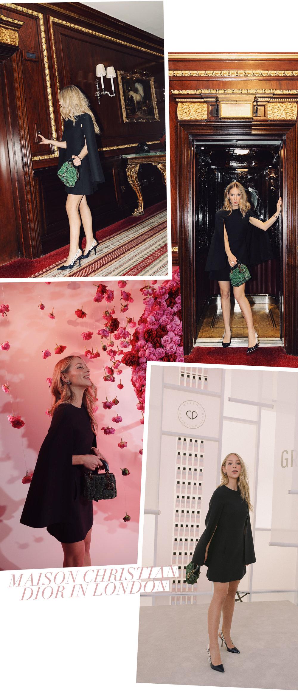 Dior_London_Carin_Olsson_05