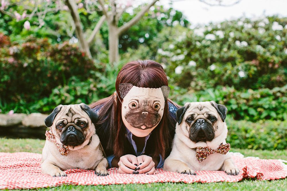 oh-jaffa-picnic-bow-ties-dog-collars