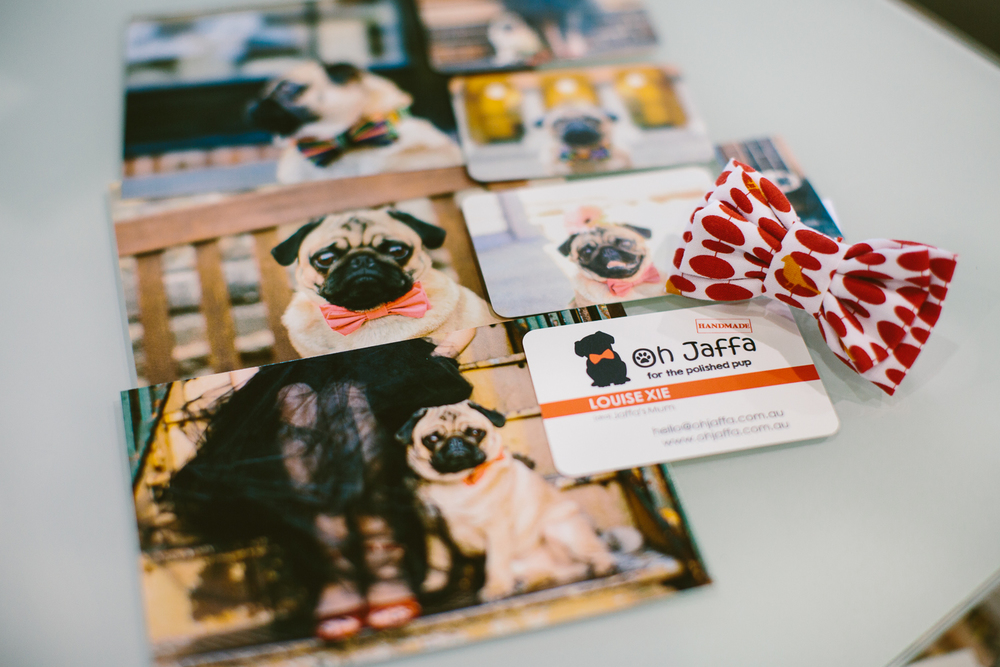 twoguineapigs_pet_photography_oh_jaffa_bow_ties_pug_dog_lovers_show_1500-31.jpg