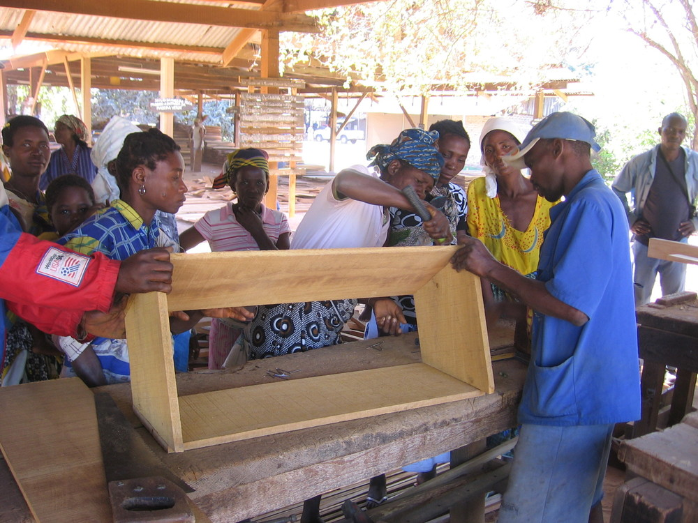 Apilculture training, making bee hives