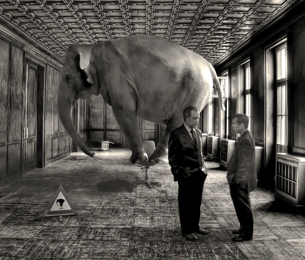 Elephant in the Room by David Blackwell, via Flickr