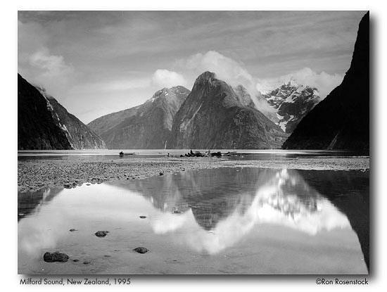 New Zealand gala2.jpeg