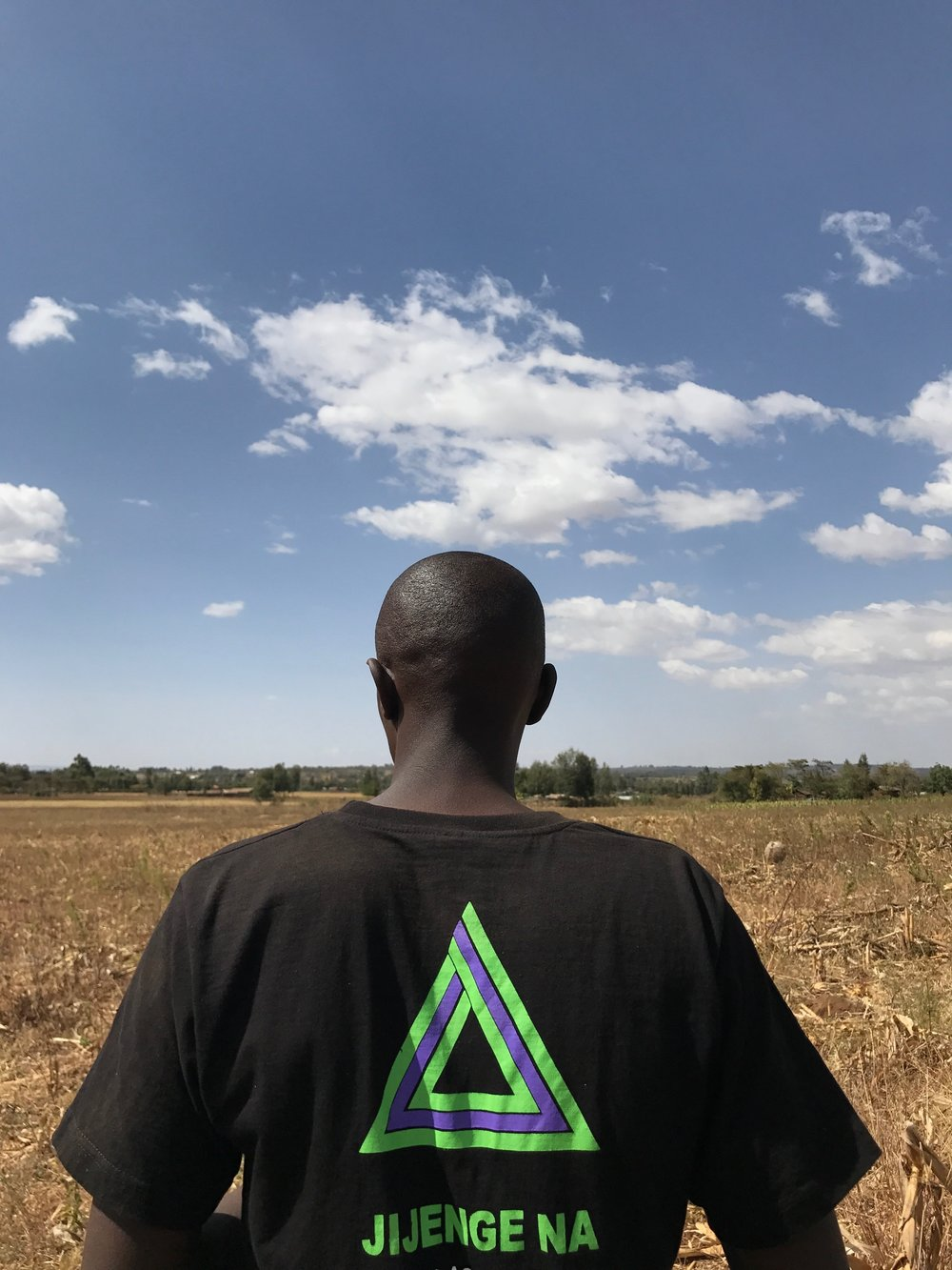 apollo agriculture