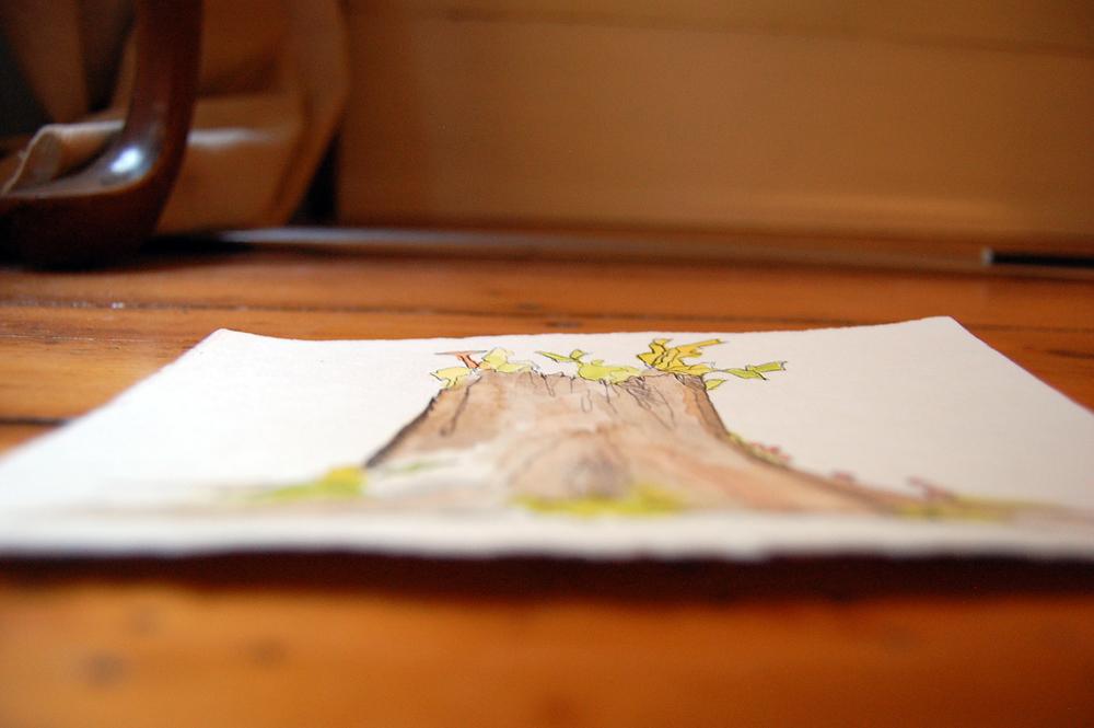 illustration-tree1.JPG
