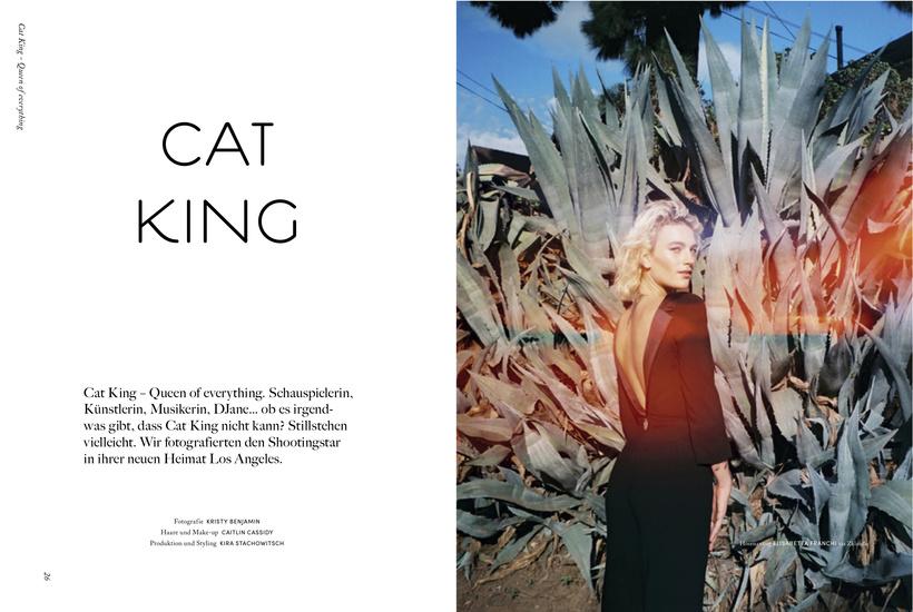 cat2-1.jpg