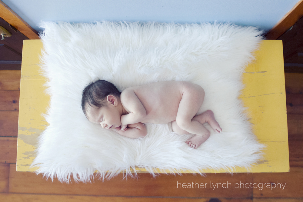 London Ontario newborn photography, London Ontario natural light newborn photography, London Ontario family lifestyle photography, London Ontario portrait photography, newborn, Heather Lynch Photography, photographed by heather Lynch, sibling photography, family of five
