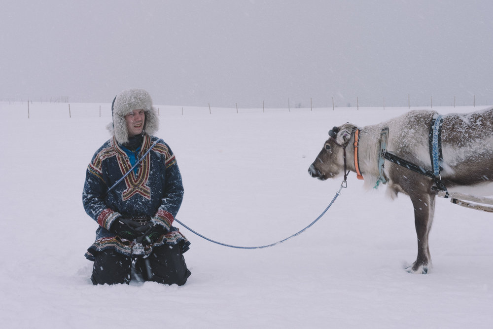 Sami noruega