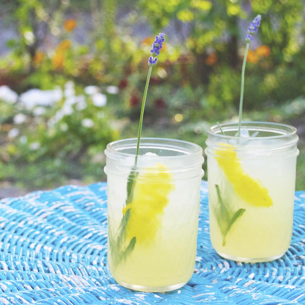 lavender lemon gin rickey