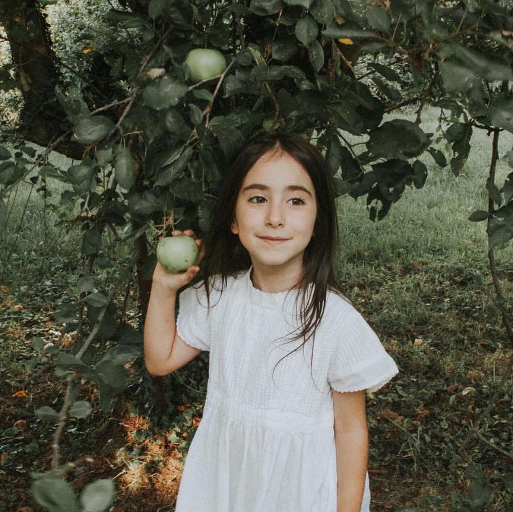 applewinner16.jpg