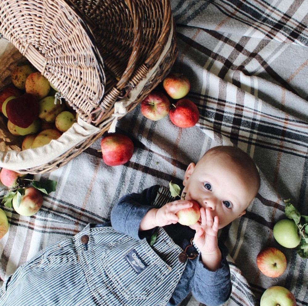 applewinner41.jpg