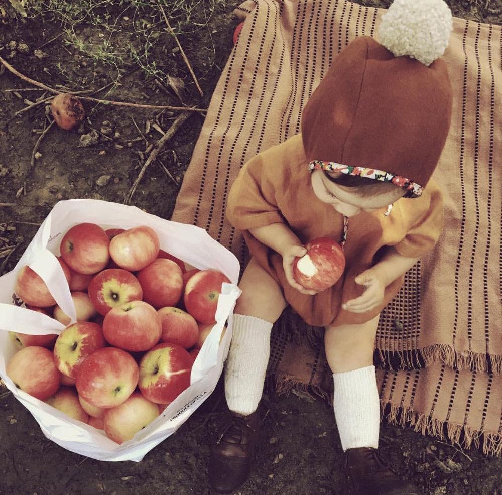 applewinner38.jpg