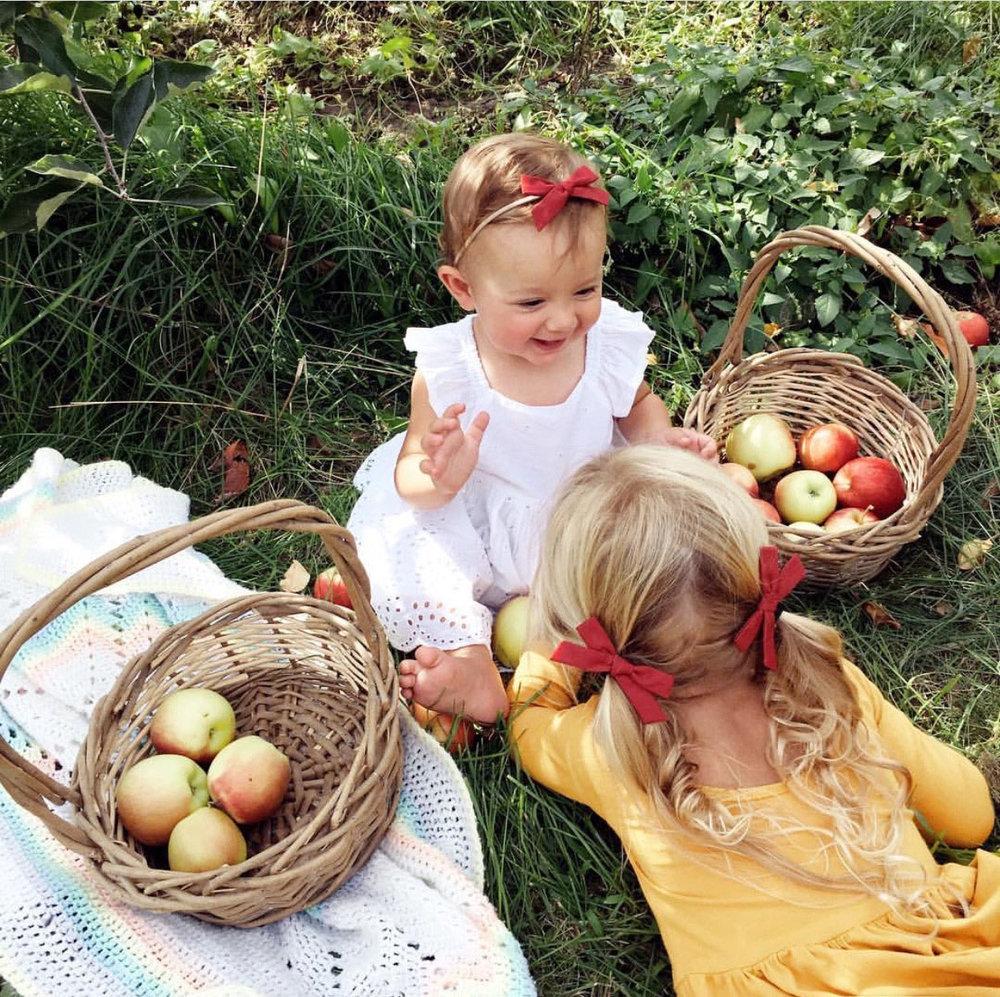 applewinner3.jpg