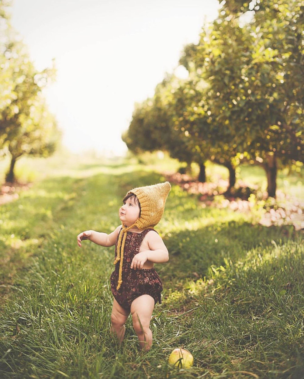 applewinner7.jpg