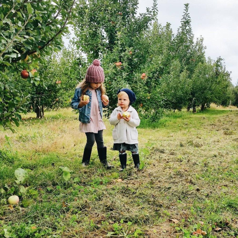 applewinner49.jpg