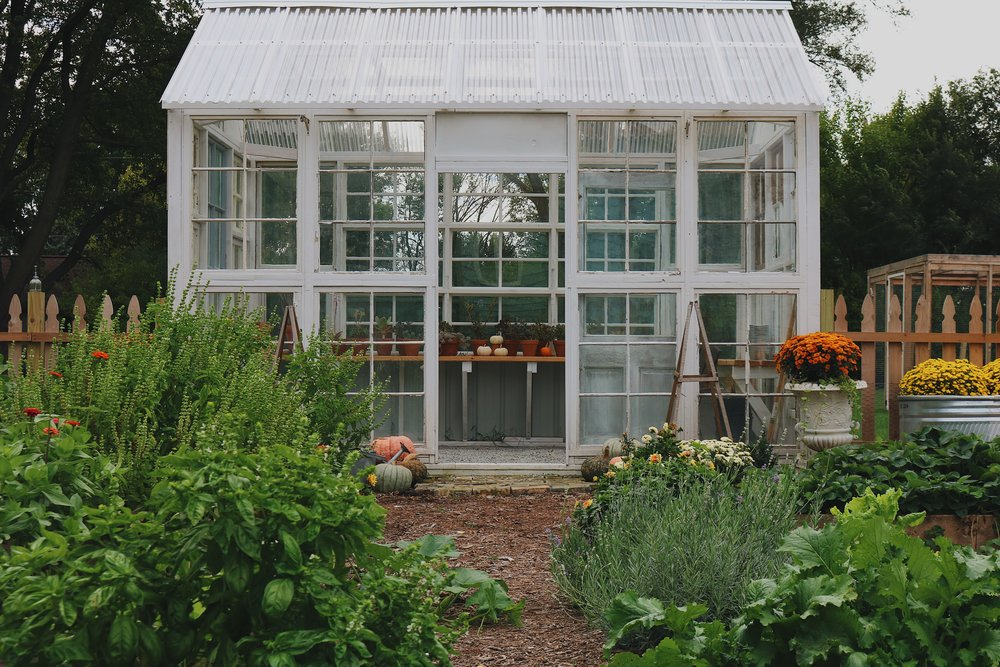 10 Homesteading Skills You Can Use No Matter Where You Live - Under A Tin Roof Blog