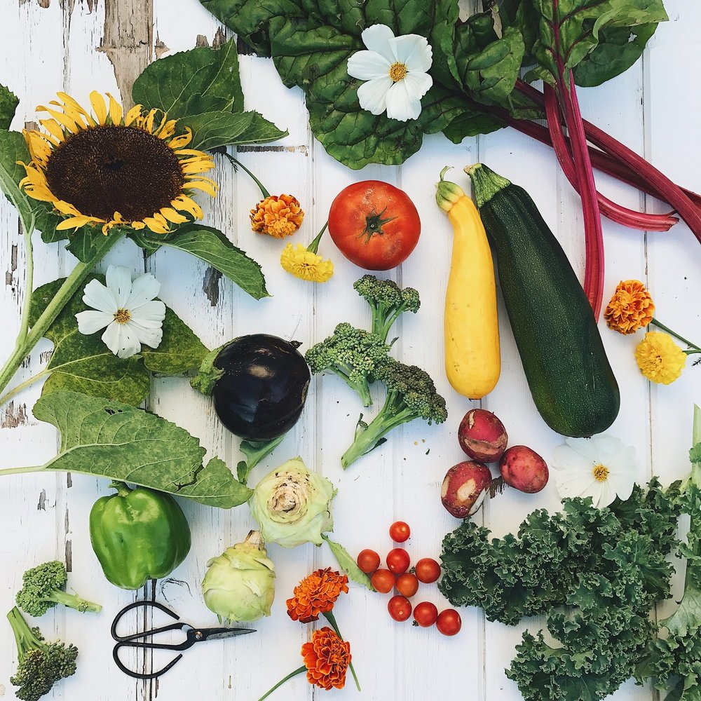 How Gardening Forced Me to Eat Plant Based
