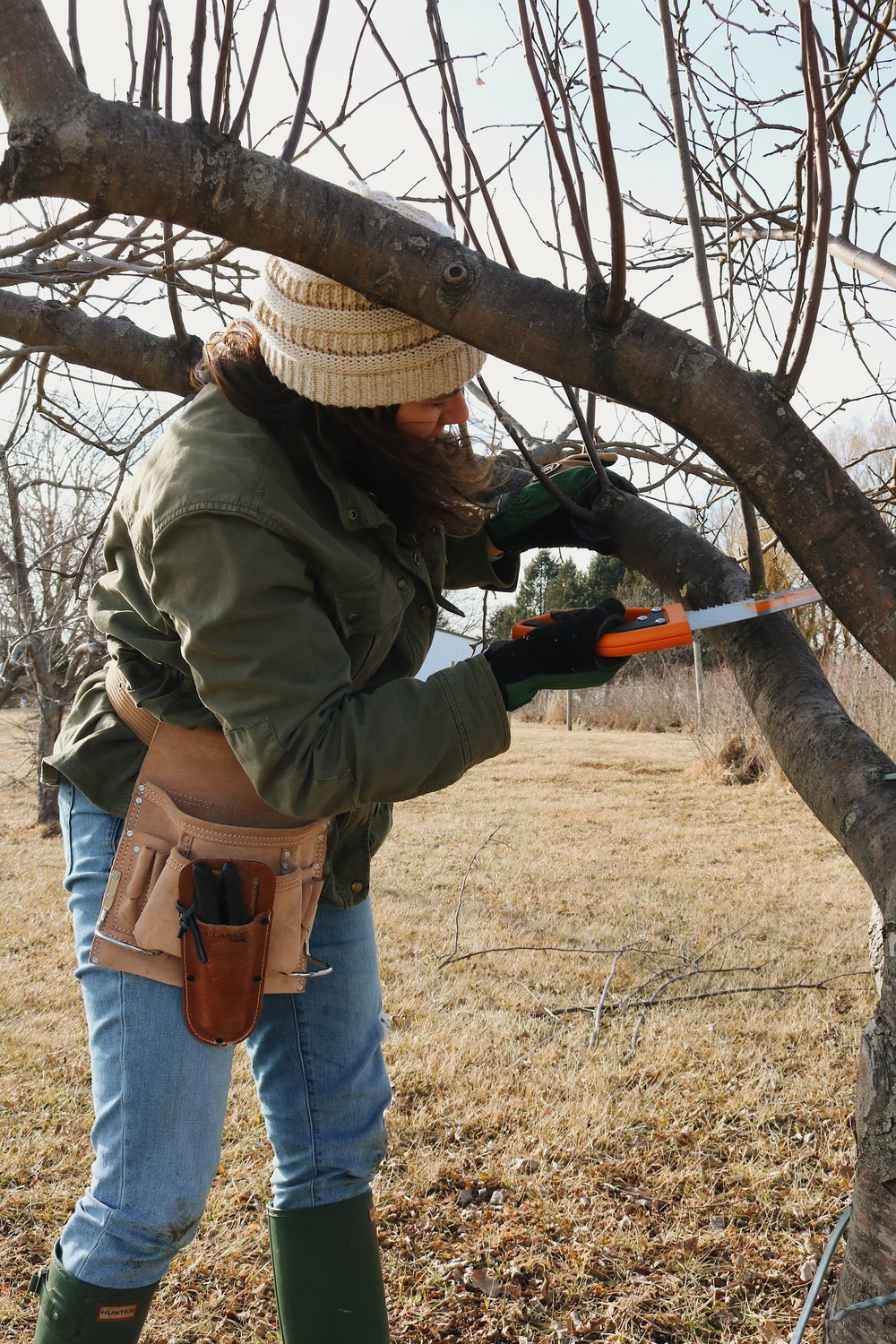 Garden Q+A: How Do I Prune Fruit Trees? - Under A Tin Roof Blog