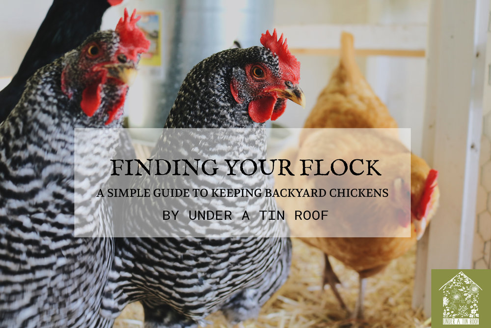 Finding Your Flock: A New E-Course! - Under A Tin Roof Blog